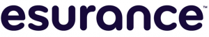 esurance_logo_detail