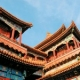 China – The Magical Truth